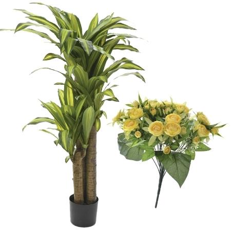 Διακοσμητικά Φυτά - Λουλούδια