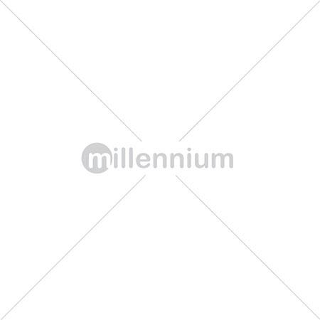 Χριστουγεννιάτικα Ασημί-Λευκά Λουλούδια